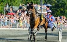 Mesterskabshest forlader Bornholm i næste uge
