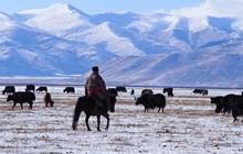 Rejseskribent fortæller om Kina
