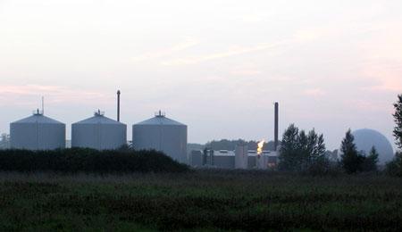 Biokraft medskaber af v�kst