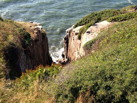 Hund reddet efter 35 meters styrt fra klipper