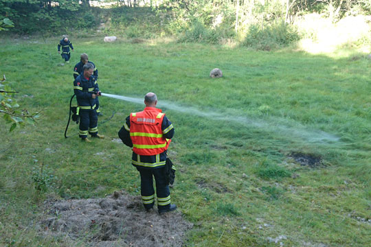 Brand på naturlegeplads