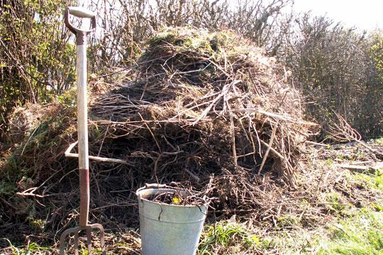 Vintergæster i kompostbunken