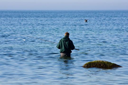 Lystfiskeriets herligheder