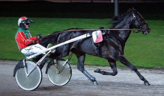 Bornholmere kan få hest med i årets derby