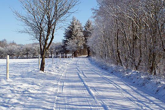 Den danske vinter er varierende