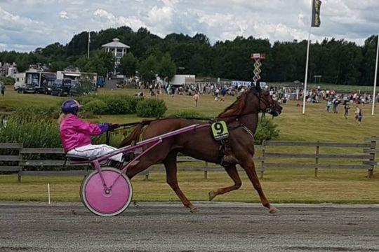 Konkurrent mindre til hest fra Bornholm