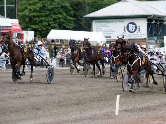 Hesteejere i lodtrækning om 78.000 kroner