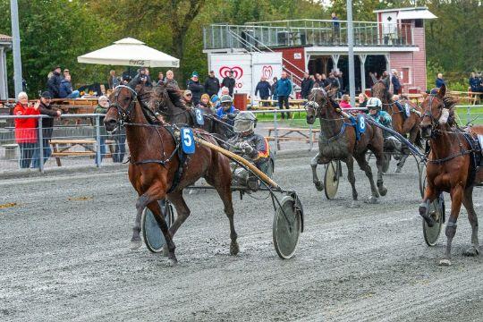 Stefan Lind-Holms stald ny i Top3