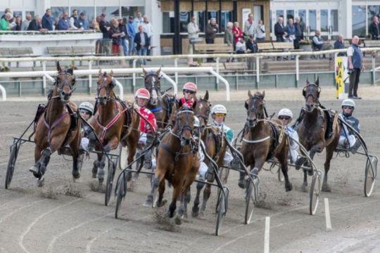 Bornholmske heste godkendt i præmieløb
