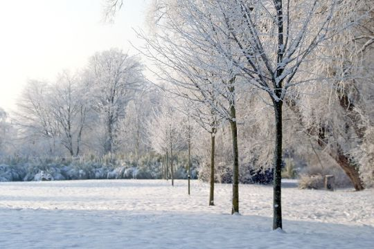 sidste hvide jul i danmark