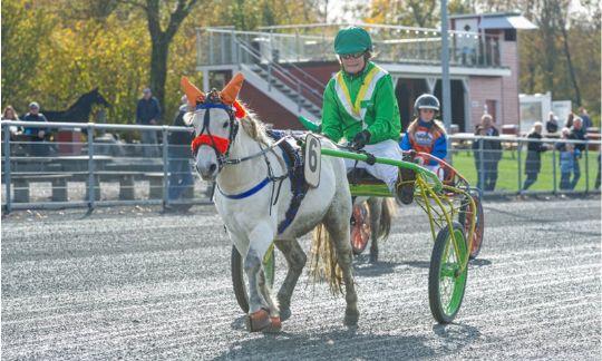 Ponyer og piger strandet i Billund