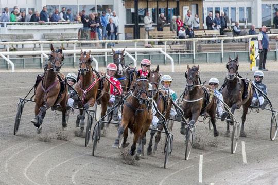 Bear les Cordons bedste hest i Sverige