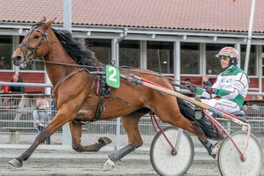 Travløb på Bornholm på valgdagen