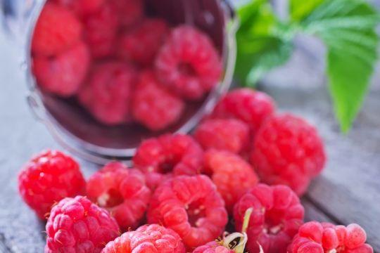 Meget er muligt med friske hindbær