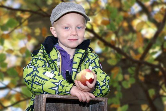 Brug æblerne fra haven i lækre salater