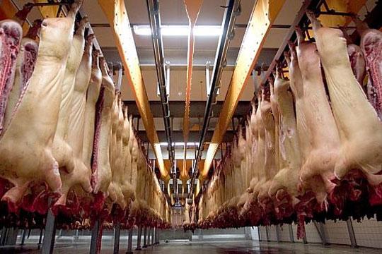Svinenoteringen i nyt prishop fra mandag