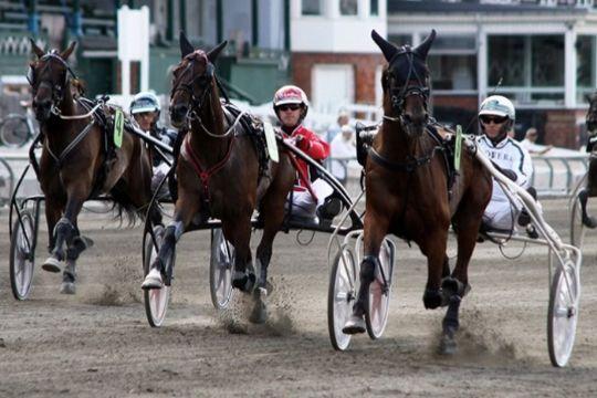 To heste fik penge i København og en ny hest til banen