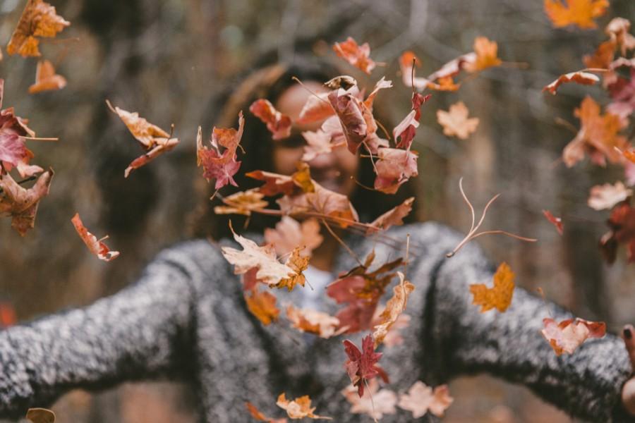 Få styr på din bolig i efterårsferien