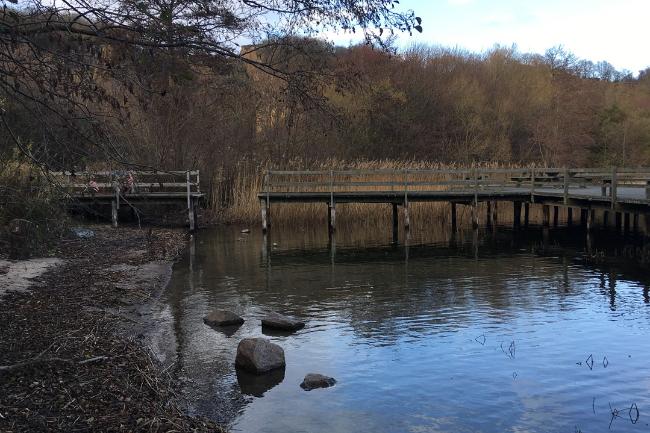 Sportsfiskere vil bygge speciel bro