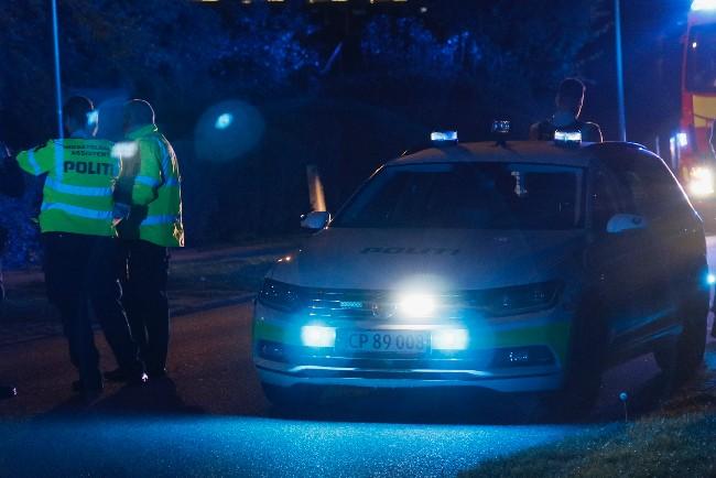 Unge biltyve stjal også fra ulåste biler i Tejn