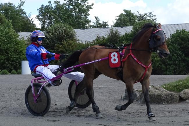 Bornholmer jagter DM-medaljer i ponytrav