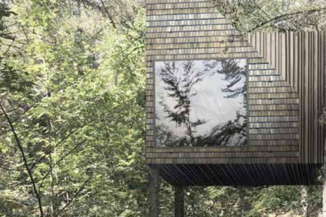 Leif Olsen imod projekt med hytter i trætoppe