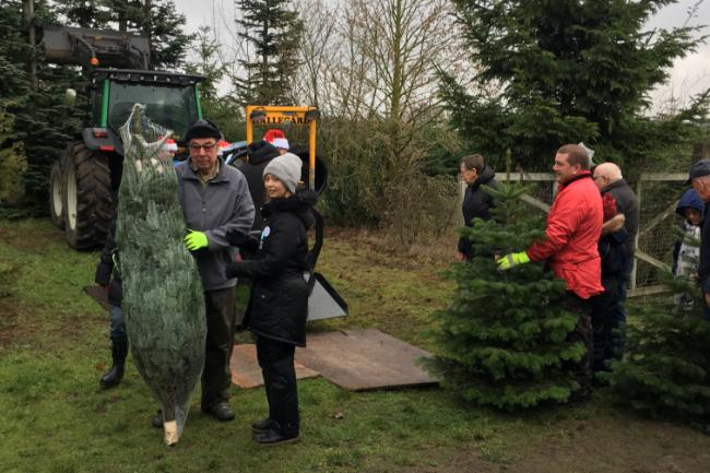 Sydbank tilbyder kunder juletræer med rabat