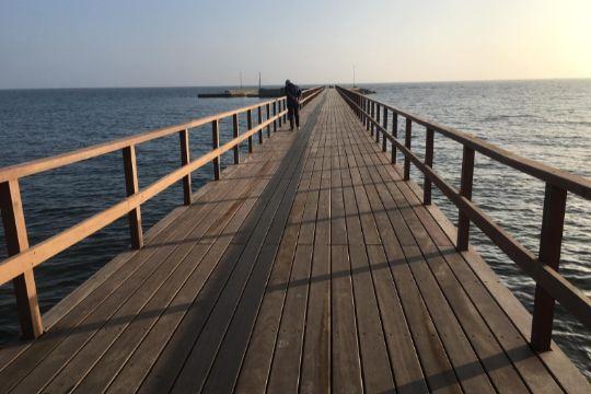 Ny bro i Arnager sprængte budgettet