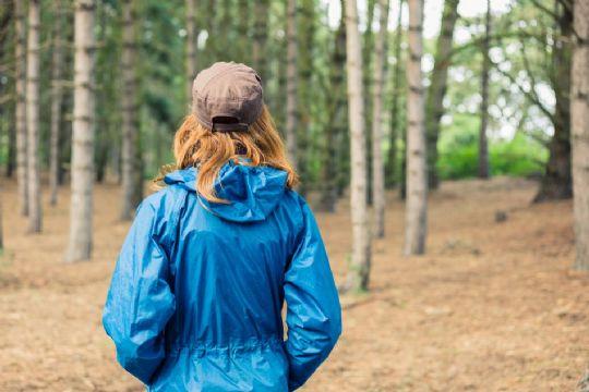 Bliv begravet i skoven