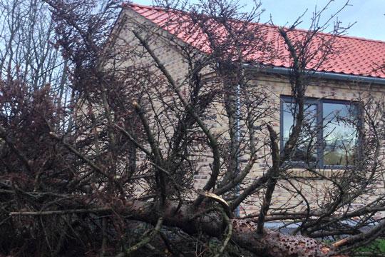 Tjek altid boligens tag efter storm