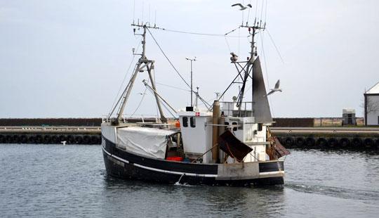Fiskere kompenseres for lavere kvoter