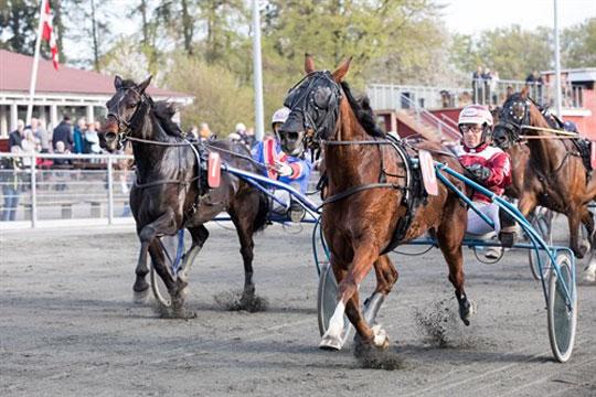 Ingen hestevæddeløb i Danmark i marts