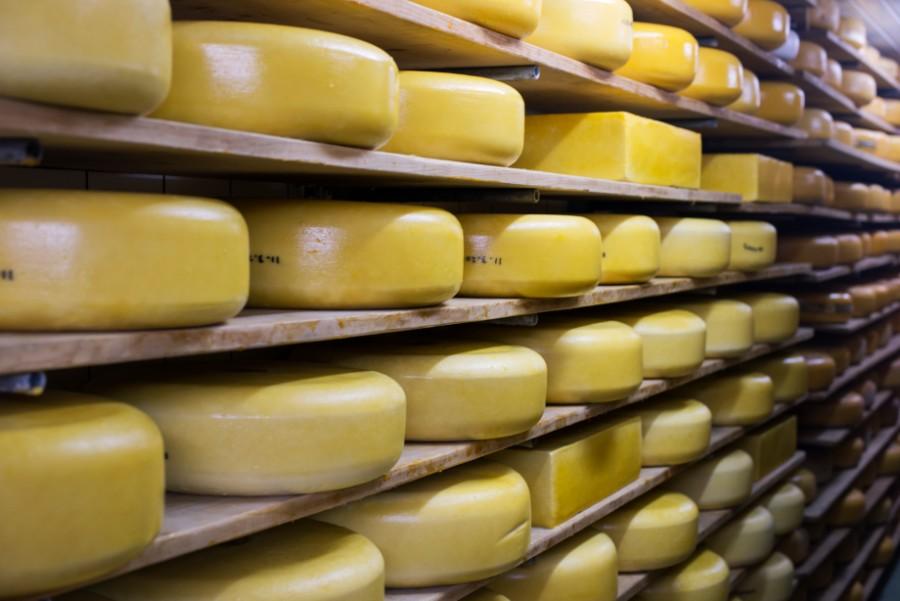 Andelsmejeriet øger sin osteproduktion