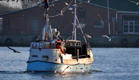 Fiskere kan få henstand på statslånene