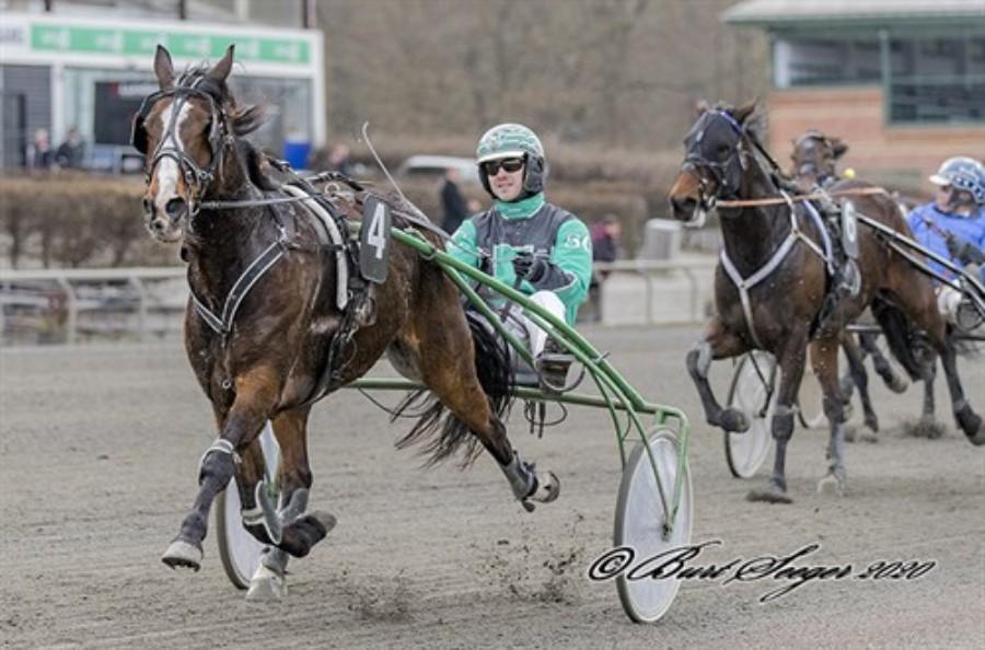 Tidligere Bornholm.nu hest til tops i hovedstaden