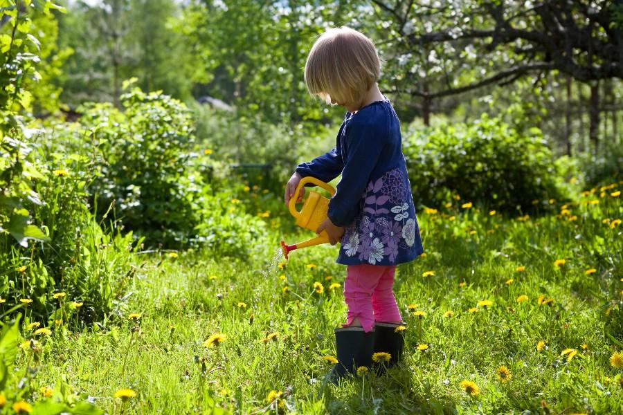 En helt naturlig og bæredygtig have