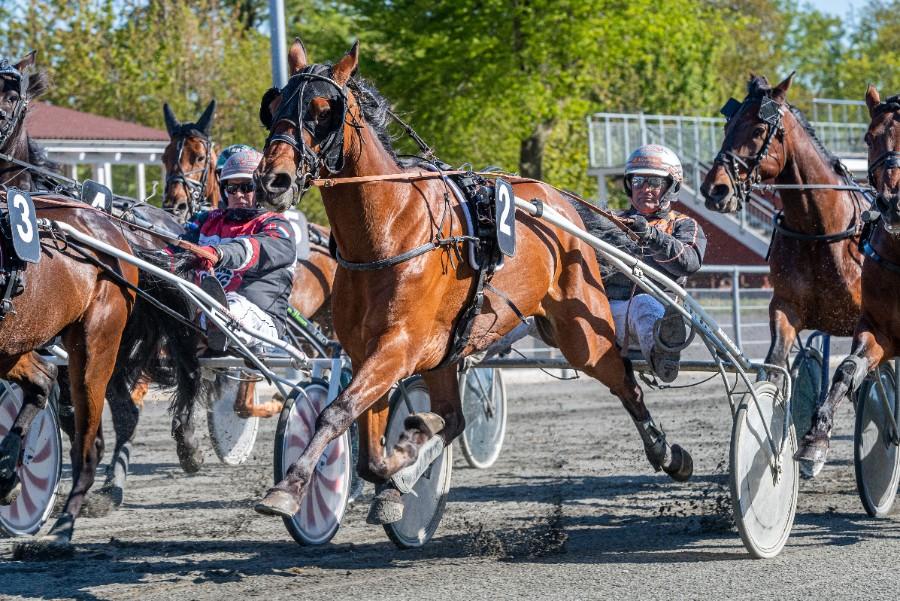 Ecce: - Jeg kunne køre tre heste i hvert løb