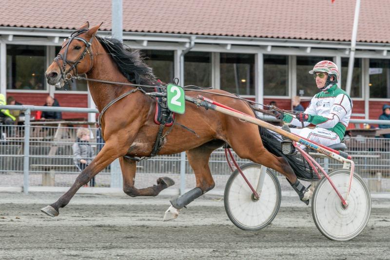 Endnu en hest solgt til Lundens travskole