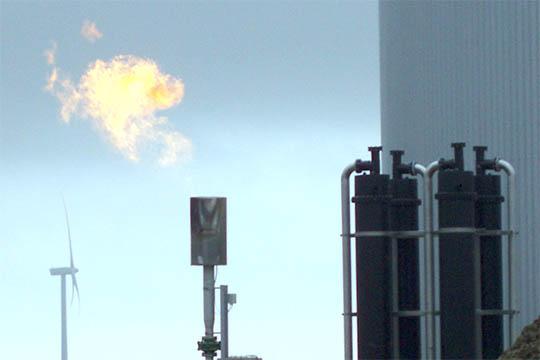 Biogasanlæg gav stort underskud