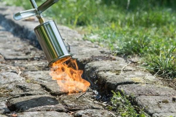 GF advarer mod at brænde ukrudt