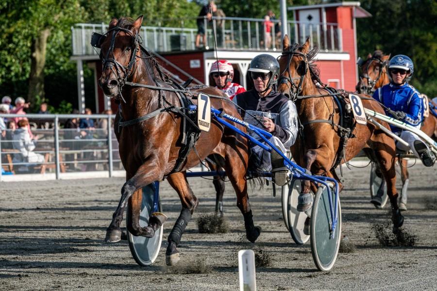 Dobbelt storløbsvinder meldt til løb i Sverige