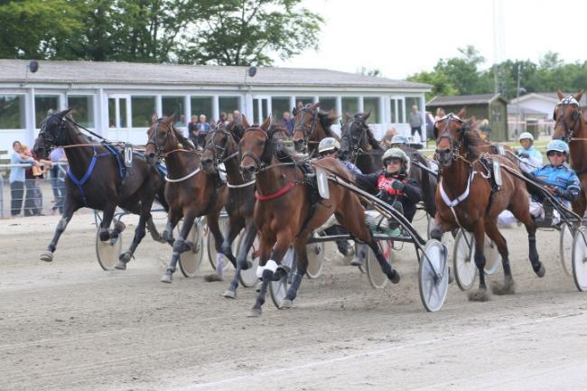 Tredjeplads til delvis bornholmskejet hest