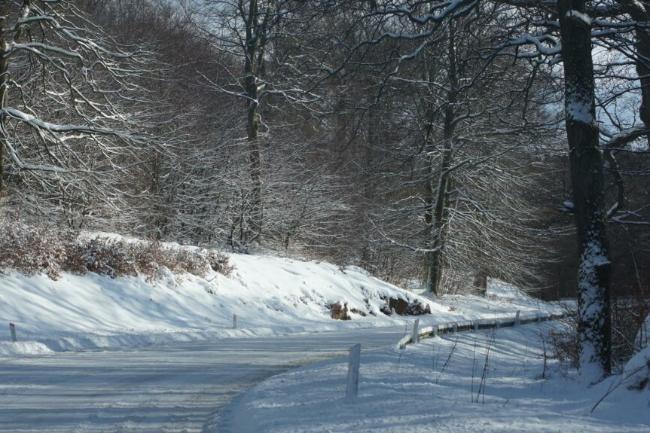 Mange mindre veje er ryddet men glatte