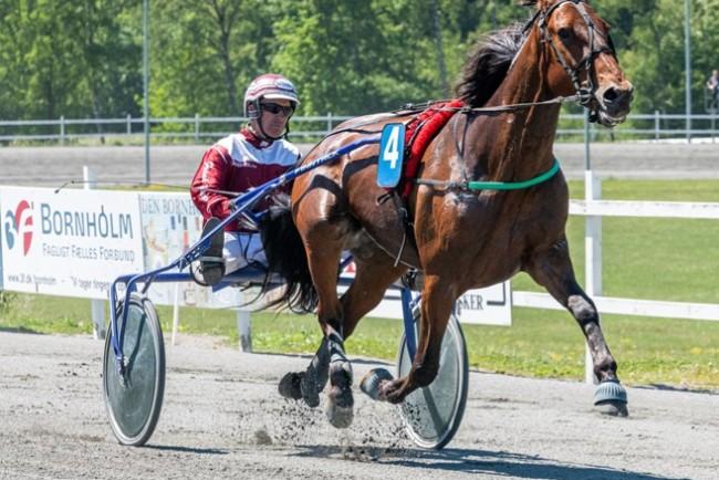 Dårlig lodtrækning til Frank Mikkelsens hest