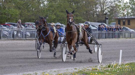 Bornholmske sejre på to travbaner i dag