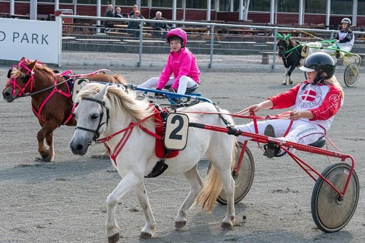 Tre ponykuske skal køre 10 løb i hovedstaden