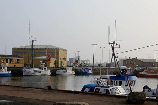 Stort fald i landinger i Nexø i 2020