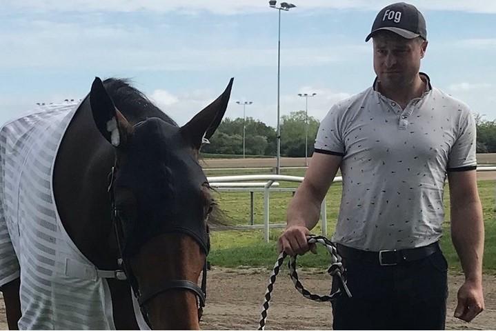Ny ung travhest afløser afdød hest