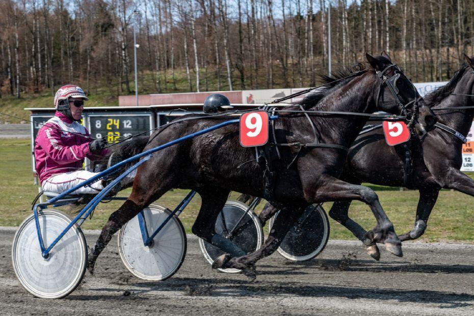 Sejrsløs Frank Mikkelsen fører trænertoppen