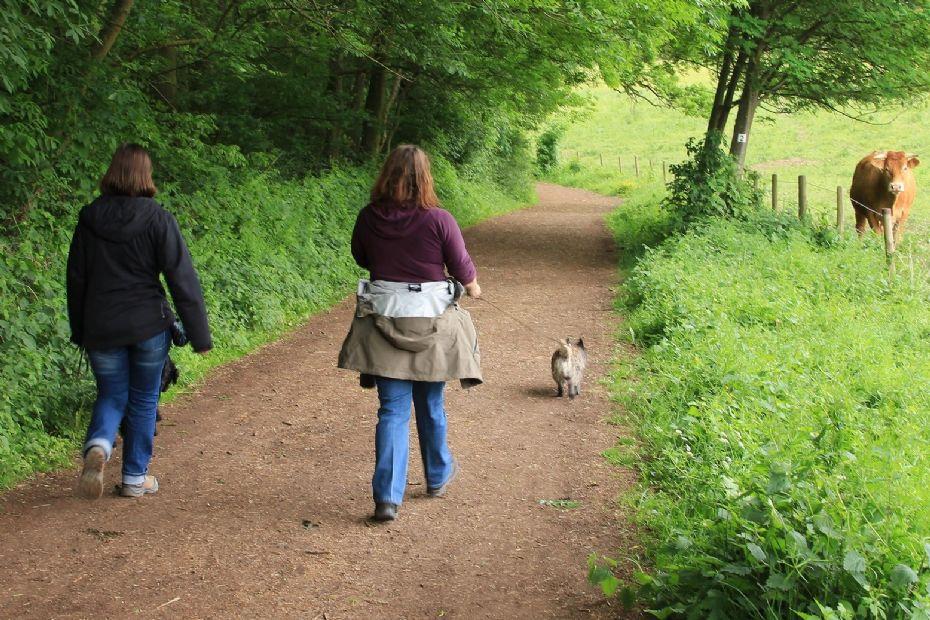 Hasle bevæger sig med fælles gåtur